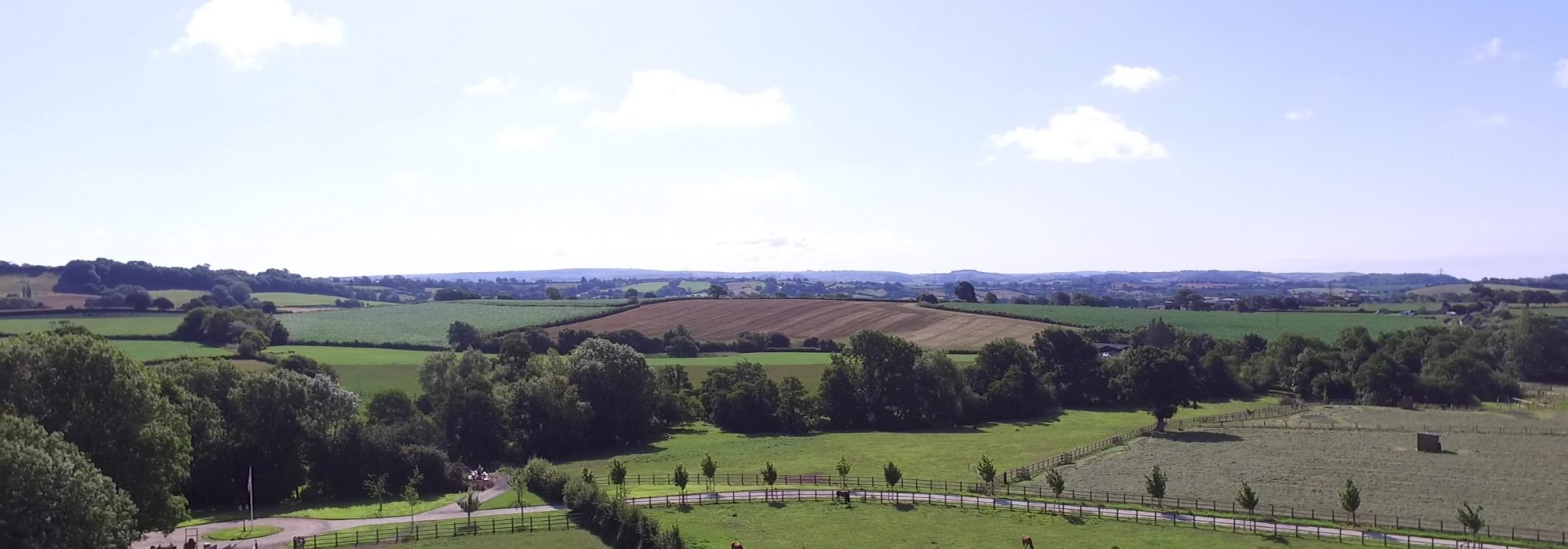 view of the paddocks horses